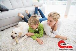 Какъв килим да изберем за дома, ако имаме деца и домашни любимци