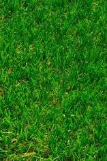 Изкуствена трева Cosmo (4014), зелена 4 м