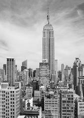 Фототапет The Empire State 183*254