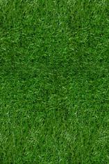 Изкуствена трева Erba (700), зелена 4 м