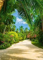 Фототапет Tropical Pathway 183*254