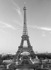 Фототапет La Tour Eiffel 183*254