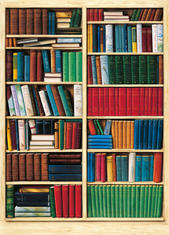 Фототапет Bibliotheque 183*254