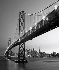 Фототапет San Francisco Skyline 366*254 - 134