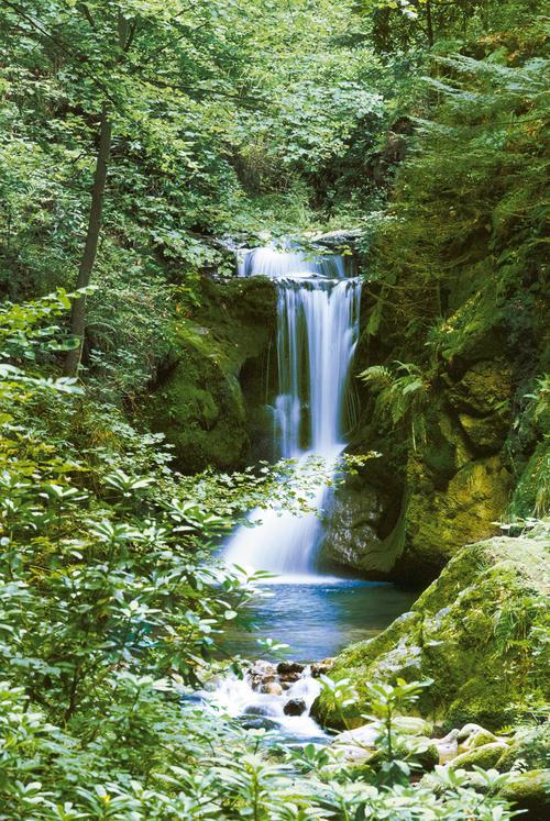 Фототапет Waterfall in Spring 183*254