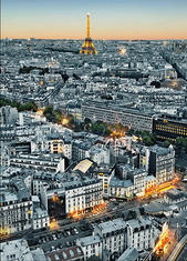 Фототапет Paris Aerial View 183*254